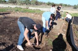Brett, Peter, Larisa, Vinny, & Ryan working to complete second veggie garden area.