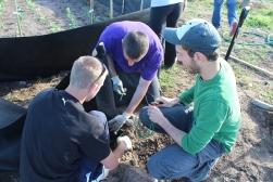 Vinny, Bobby, & Mark putting up netting on second veggie garden area.