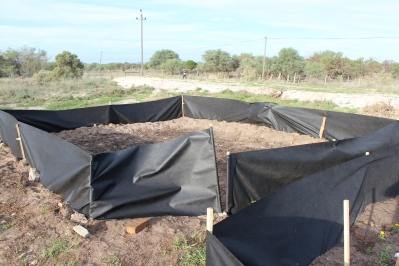 Second veggie garden area completed!