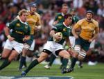 rugby, springboks