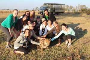 QU301 South Africa class with cheetah