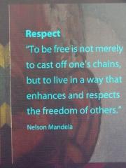 Mandela quote-blue