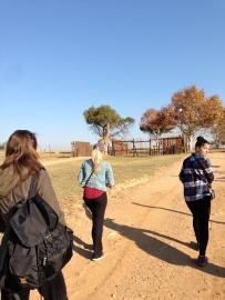 Kristyn, Mel, and Lauren with Giraffe Morning